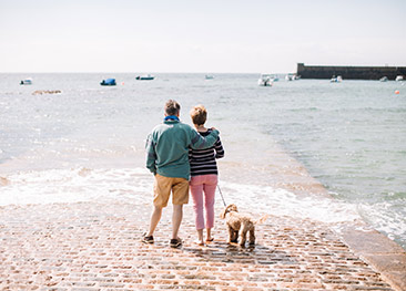 Have a Dog-Friendly Holiday to Jersey