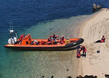 Island RIB Voyages
