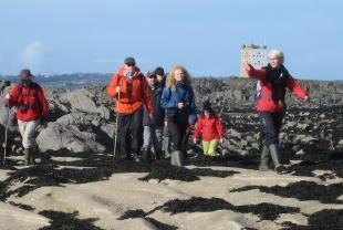 Jersey Walk Adventures Organised Seabed Walks
